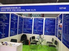 Shandong Fortune Spring International Trade Co., Ltd.