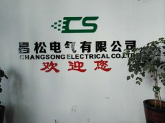 Changsong Electric Co., Ltd.