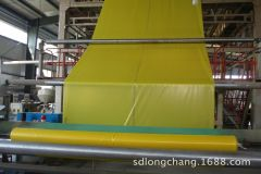 Shandong Longchang Plastic Co., Ltd.