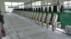 Guangzhou Diligent Textile Co., Ltd.