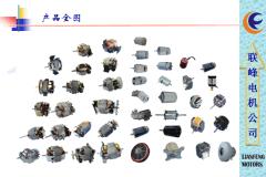 Dongguan City Lianfeng Motor Co., Ltd.