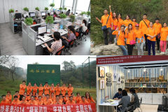 Qingdao Grammy Home Interior & Gift Co., Ltd.