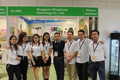 Dongguan Dingcheng Technology Co., Ltd.