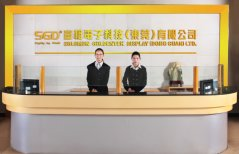 Solomon Goldentek Display (Dong Guan) Ltd.