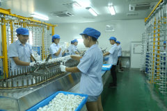 Shaoxing Shangyu Yakin Packaging Co., Ltd.