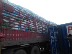 Polifar Group Limited