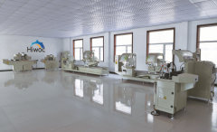 Shandong Hiwoc Technology Co., Ltd.