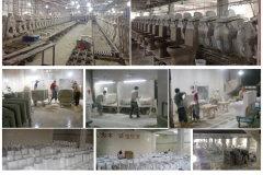Chaozhou Ocean Ceramic Co., Ltd.