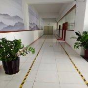 Shenzhen Lito Advertising Equipment Co., Ltd.