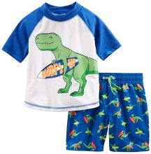 Baby and Toddler Boys′ 2-Piece Swimsuit Trunk and Rashguard