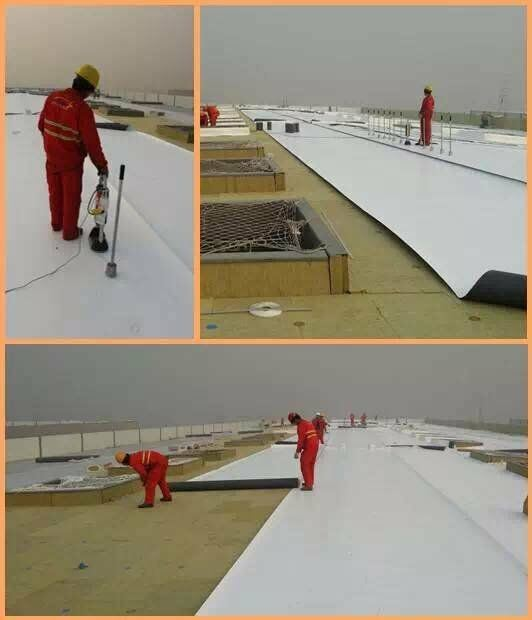 China Exposed Reinforced Pvc Roofing Membrane Pvc