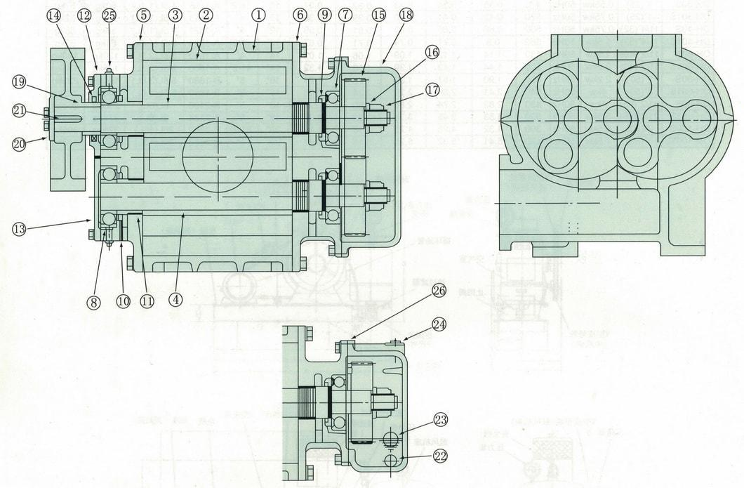 Ds-L Large Capacity Twin Lobe Air Roots Blower for Pneumatic Conveying with Ce and ISO9001