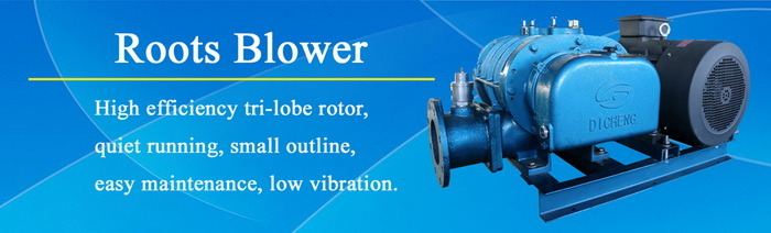 Dsr50V Roots Vacuum Blower Manufacturer for Biogas Suction and Discharge