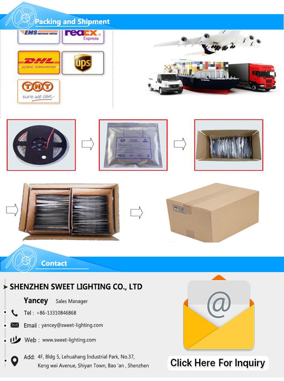 Promotion Packing 5m DC12V Waterproof IP65 SMD 3528 300LEDs RGB LED Strip