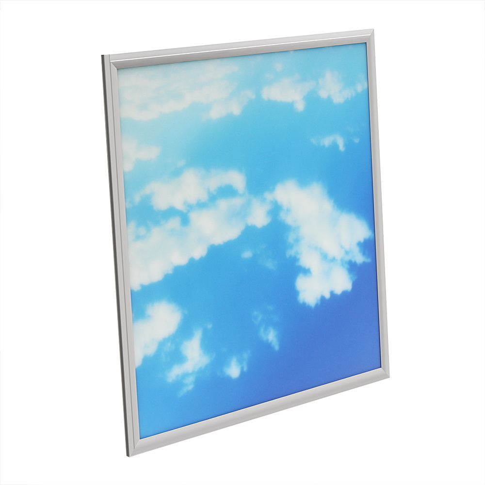 China Real 3d Vision Blue Sky Led Panel Artificial