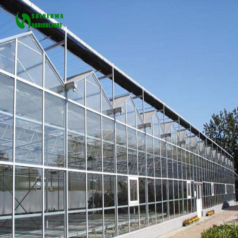2018 Agricultural Glass Greenhouse for Planting Vegetables