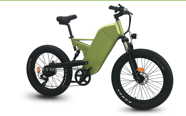 China Full Suspension Mountain Fat Tire Electric Trek Bike