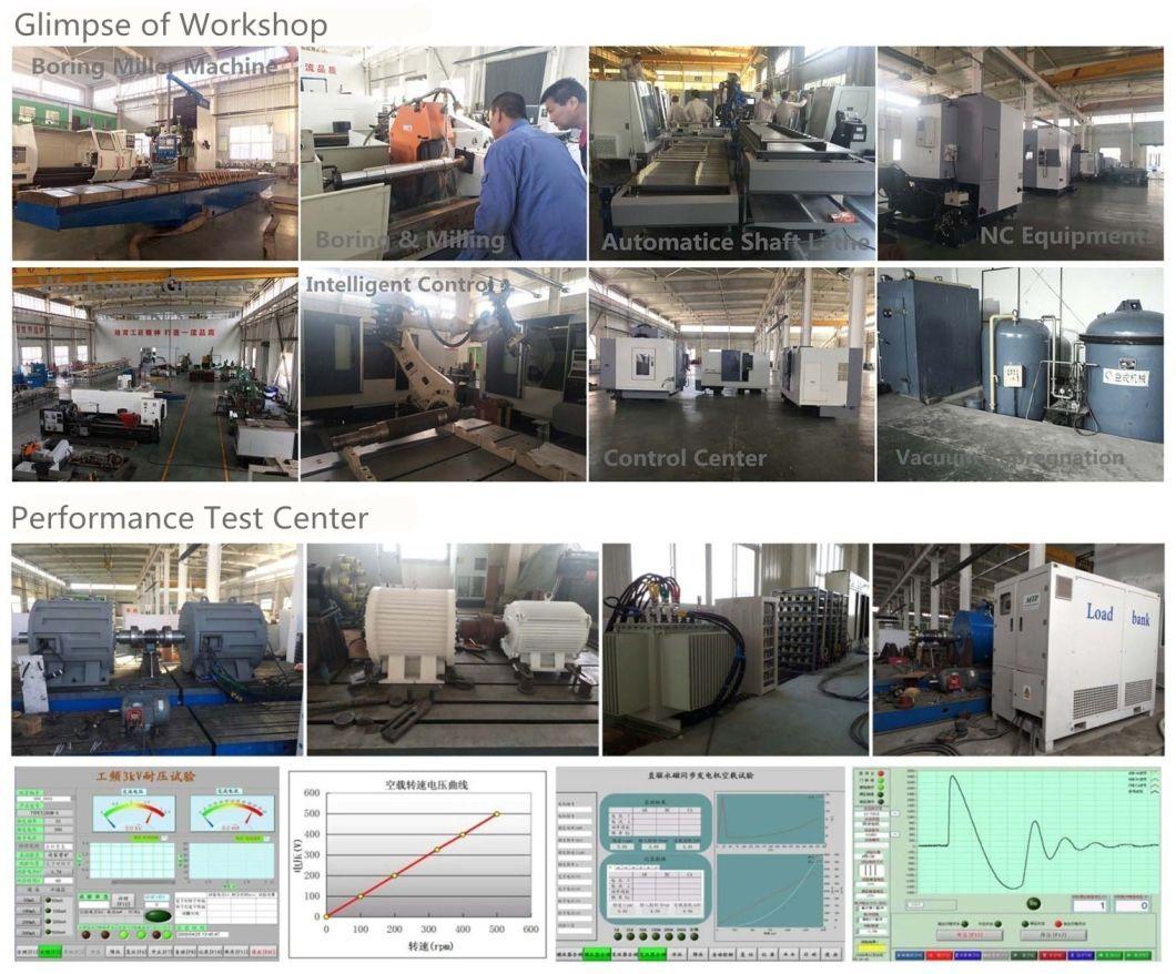Ff-30kw/200rpm/AC400V Permanent Magnet Alternator (PMG/PMA/Hydro)