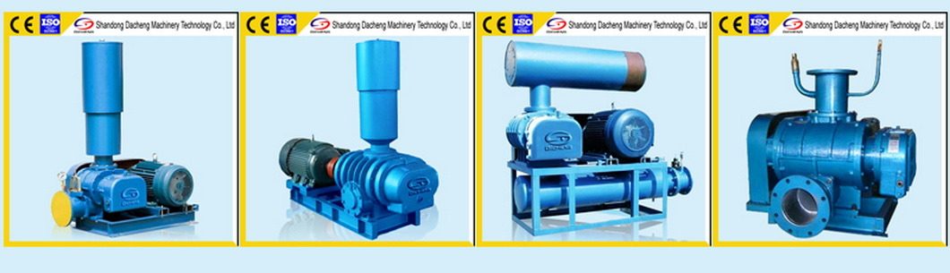 Dsr-V Long Service Life Roots Vacuum Pump Manufacturer with Ce Certificate