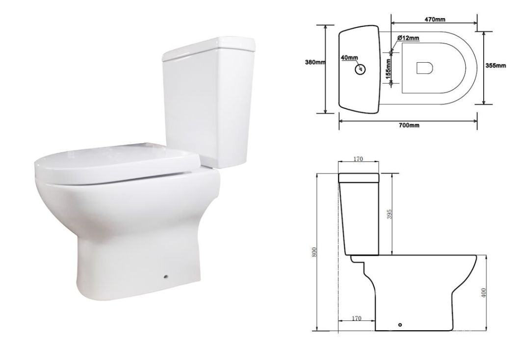 China Bathroom Ceramic Two Piece Wash Down P Trap Wc