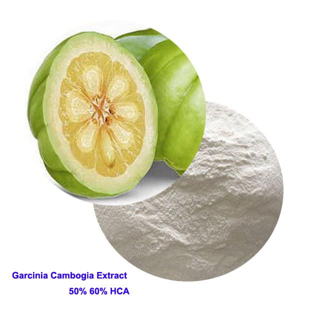 Weight Loss Garcinia Cambogia Extract Powder Hca 50 Biochemical From China On Topchinasupplier Com