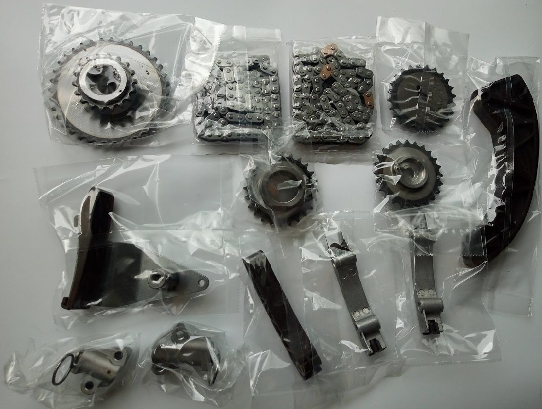 China Engine Parts Timing Chain Kit with Gear for Hyundai