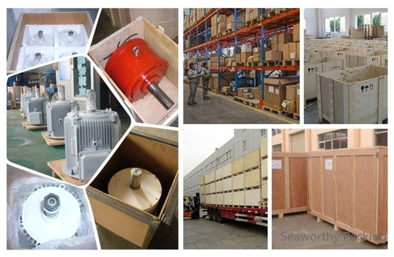 Ffl-50kw/100rpm/AC400V Permanent Magnet Alternator (PMG/PMA/Hydro)