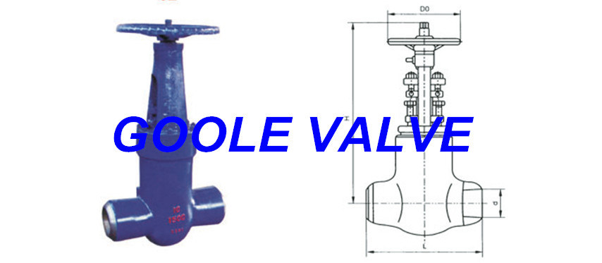 Pressure Seal Power Station Gate Valve (GAZ60Y)