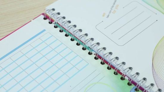 China Fashion Design College Students Hardcover Wire A4 Spiral Notebook China Paper Mini Notebook Hardcover Notebook
