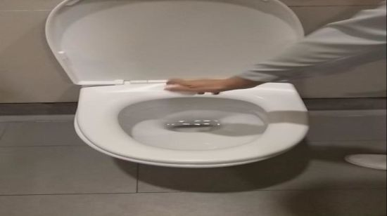Spa Toilet Seat : China health sanitary care hotel hospital spa salon disposable