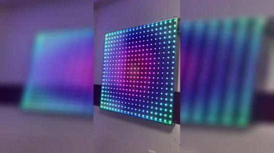 China 5V/12V 12mm DMX RGB LED Pixel Ws 2811 LED Light Pixel