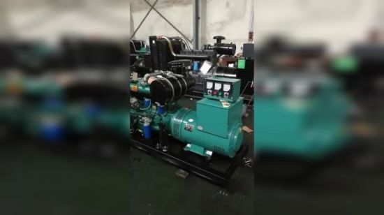 China Yangdong Generator 15 or 20 kVA Diesel Engine Stanford
