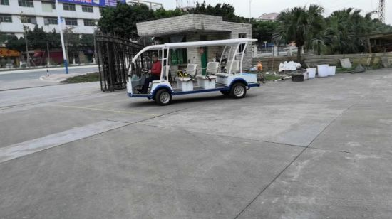 [Hot Item] 8 Seats Electric Sightseeing Car Golf Cart Tour 110V Customize  Color