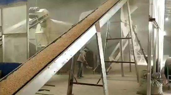 China Biomass Fuel Hemp 6mm Machine to Make Wood Pellets