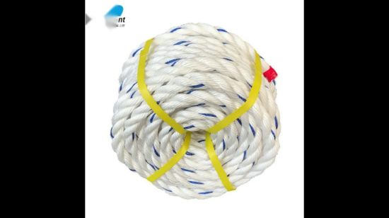 China 3 or 4 Strand Twisted PP Rope - China PP Rope, Twisted Rope