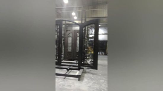 China Modern Steel Grill Design Main Entrance Wrought Iron