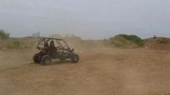 China High Performance Big Power 2 Seat 200cc Adult Dune