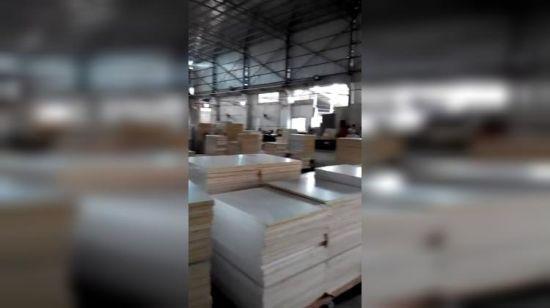 Amerikanischer Küche-Möbel-festes Holz-Ahornholz-Küche-Schrank