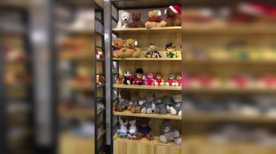 Un assortiment de Teddy Bear