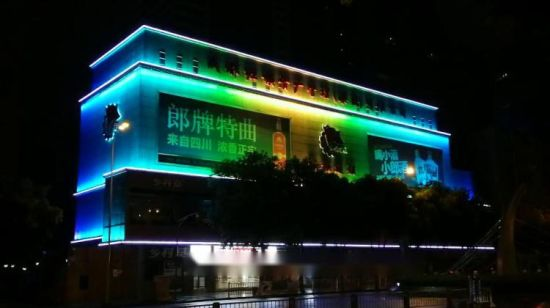 Profess Building LED Lighting Project Wasserdichte LED-Lichtleiste IP65 24 W DMX512 System Control RGB Color Changeing LED-Wandscheibe