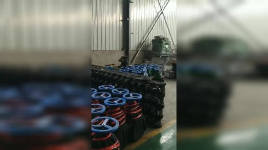 China Pn10/16 BS5163 Gate Valve - China Sluice Valve for