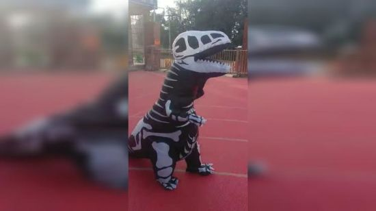 2018 new design halloween party inflatable skeleton dinosaur costume