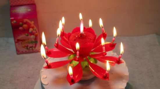 China Birthday Party Candle Happy Lotus Music