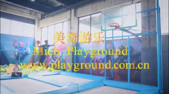 China Mickey Mouse Needak Big Bounce Trampoline Park - China