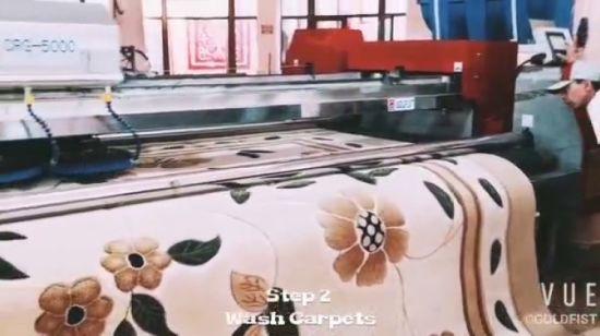 China Car Mat Washing Machine Goldfist China Carpet Washing