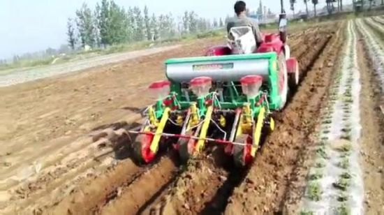China 5 Rows No Till Maize Corn Seeder China Corn Planter Cultivator