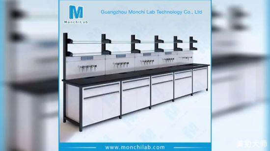 China Lab Equipment All Steel Biotechnology Laboratory