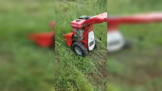 China Hand Push Lawn Mower 196cc Sickle