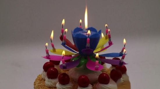 Magic Birthday Candle Flower Musical Lotus
