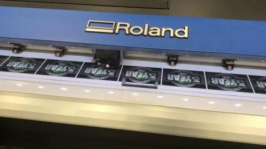 China Large Format Roland Digital Inkjet Truevis Vg-640, Vg